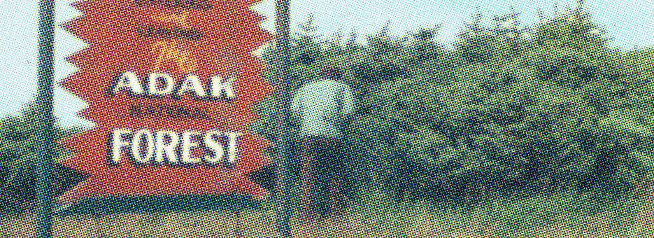 Adak - entrez dans la forêt (BANDE)